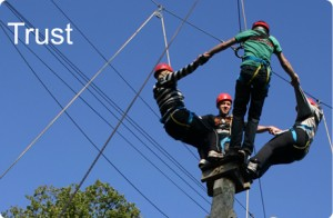 High Ropes Team Building